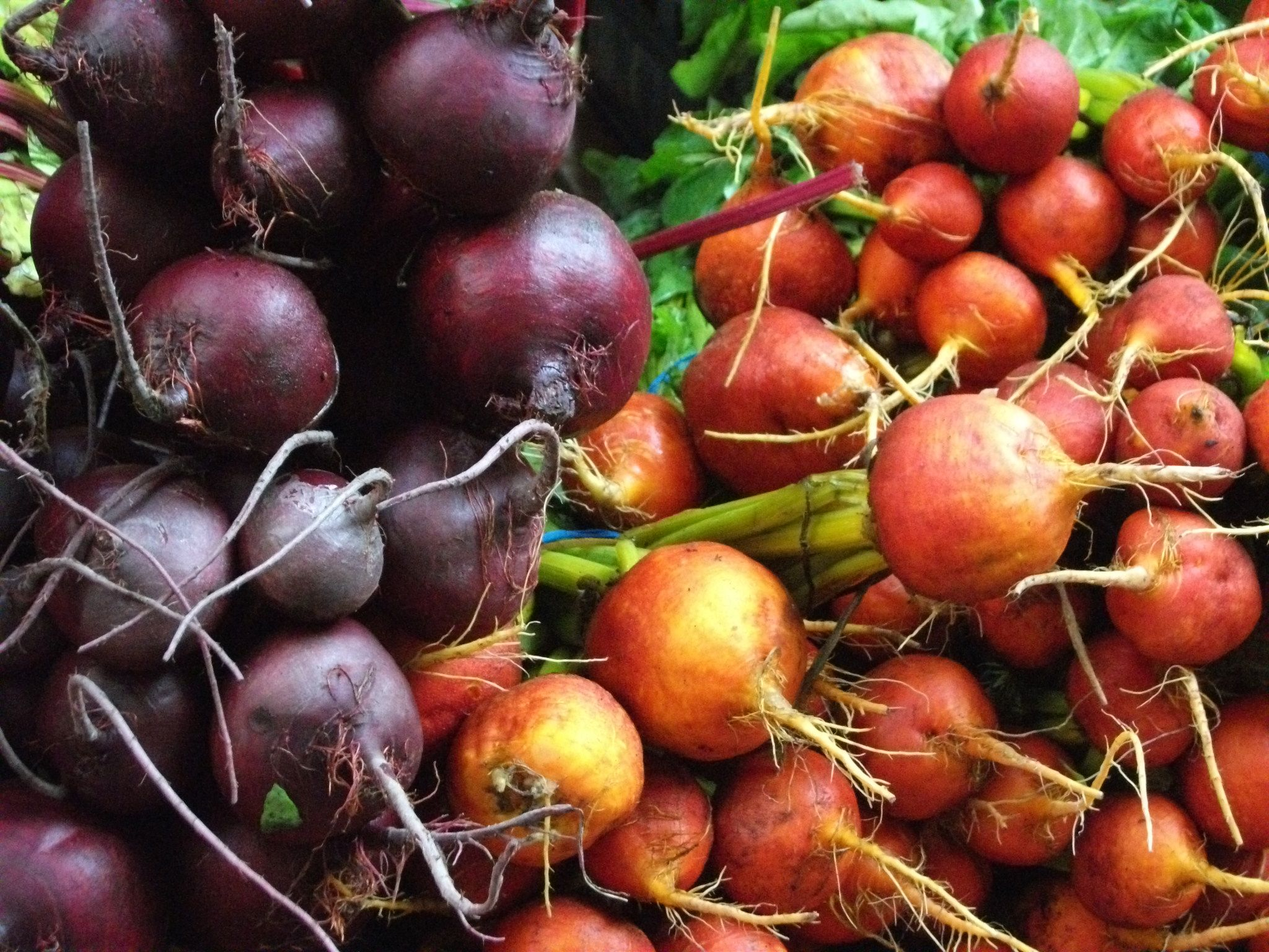 The Nourished Epicurean_Beets