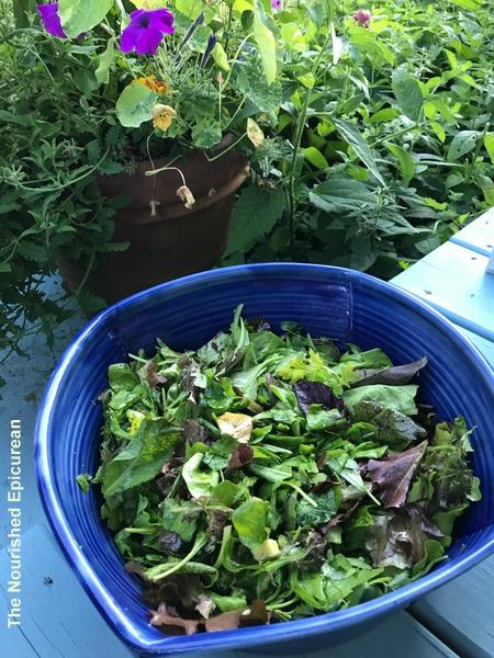 The Nourished Epicurean_Summer Greens & Broccoli Salad