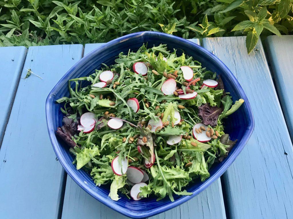 Arugula salad with radish